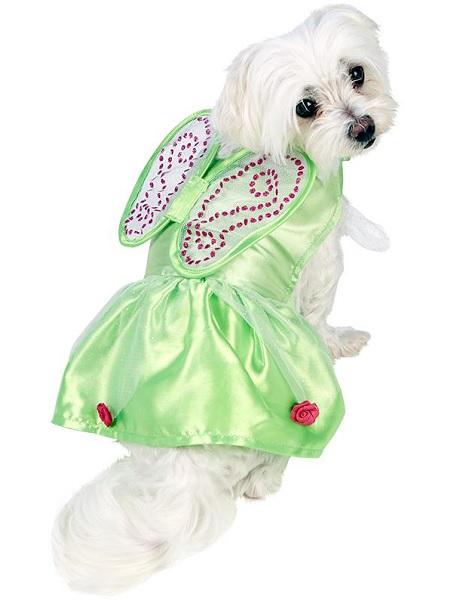 Weihnachtskostüm-Hund